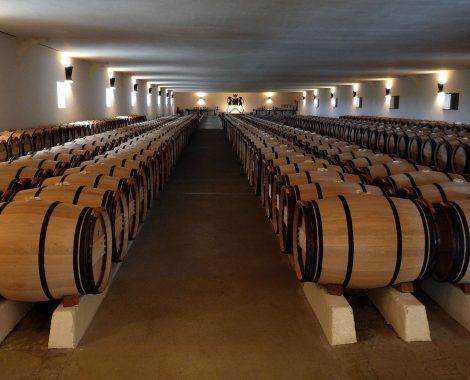 Château_Mouton_Barriques